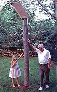 Two Four Feet Tree Mirages with Woodpecker Nest Box